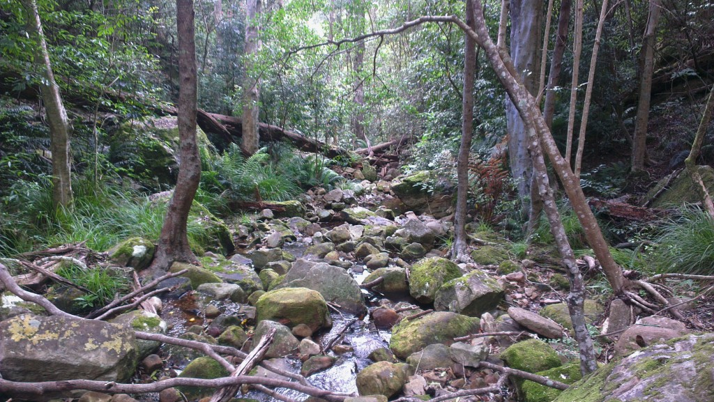 A dry stream along the Woodcutters Path